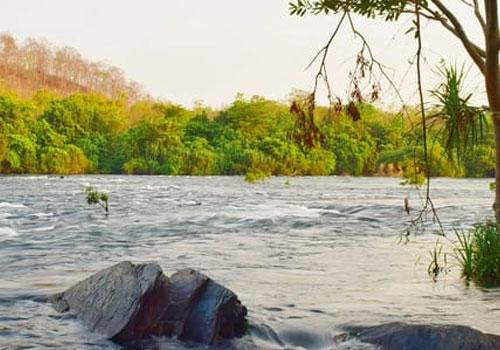 moulangi-eco-park-4