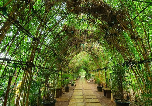 nature-first-eco-village-3